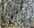 lucido-102-anno-2009-misura-50x60